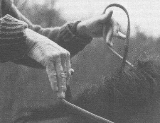 Les mains