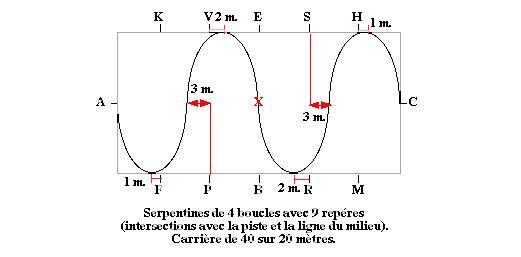 serpentine_4